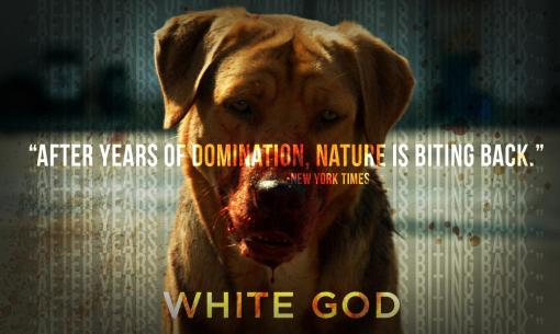 rise_up_white_god
