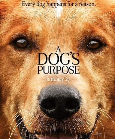 dogs-purpose-movie-2-500x710-1-500x602