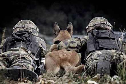 service-dogs-loyalty-military-police-1-58b039ee51170__605