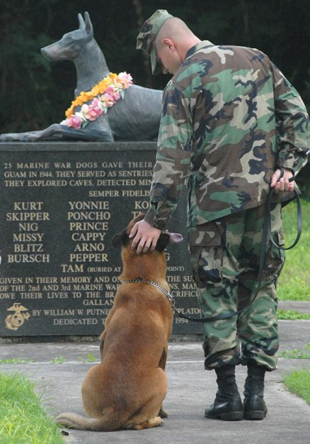 service-dogs-loyalty-military-police-13-58b03a0a47ee0__605